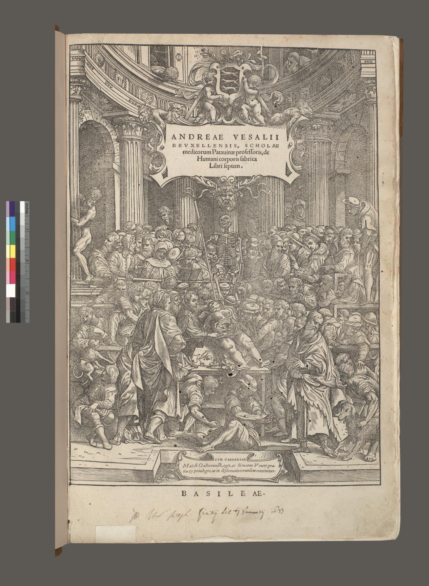 Andreae Vesalii Bruxellensis, scholae medicorum Patauinae professoris, de humani corporis fabrica libri septem.