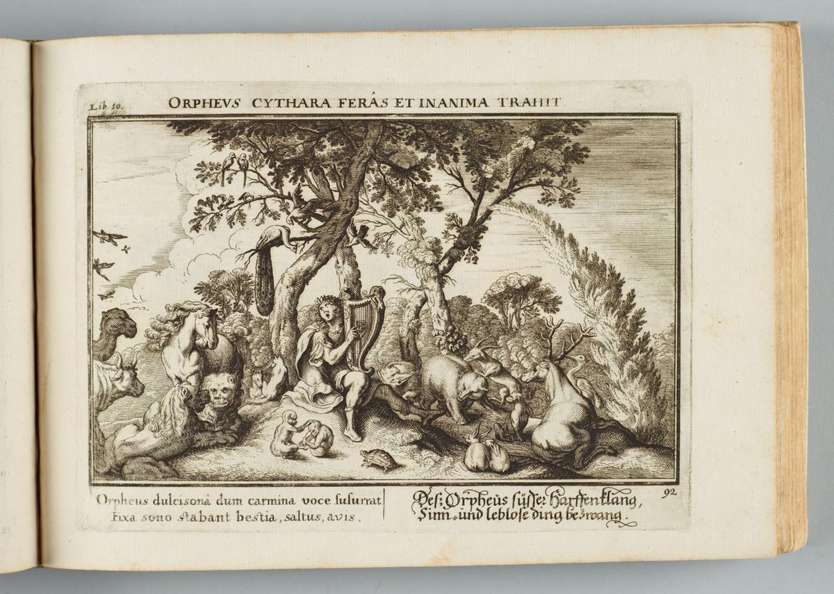 German Ovid engraving-Orpheus