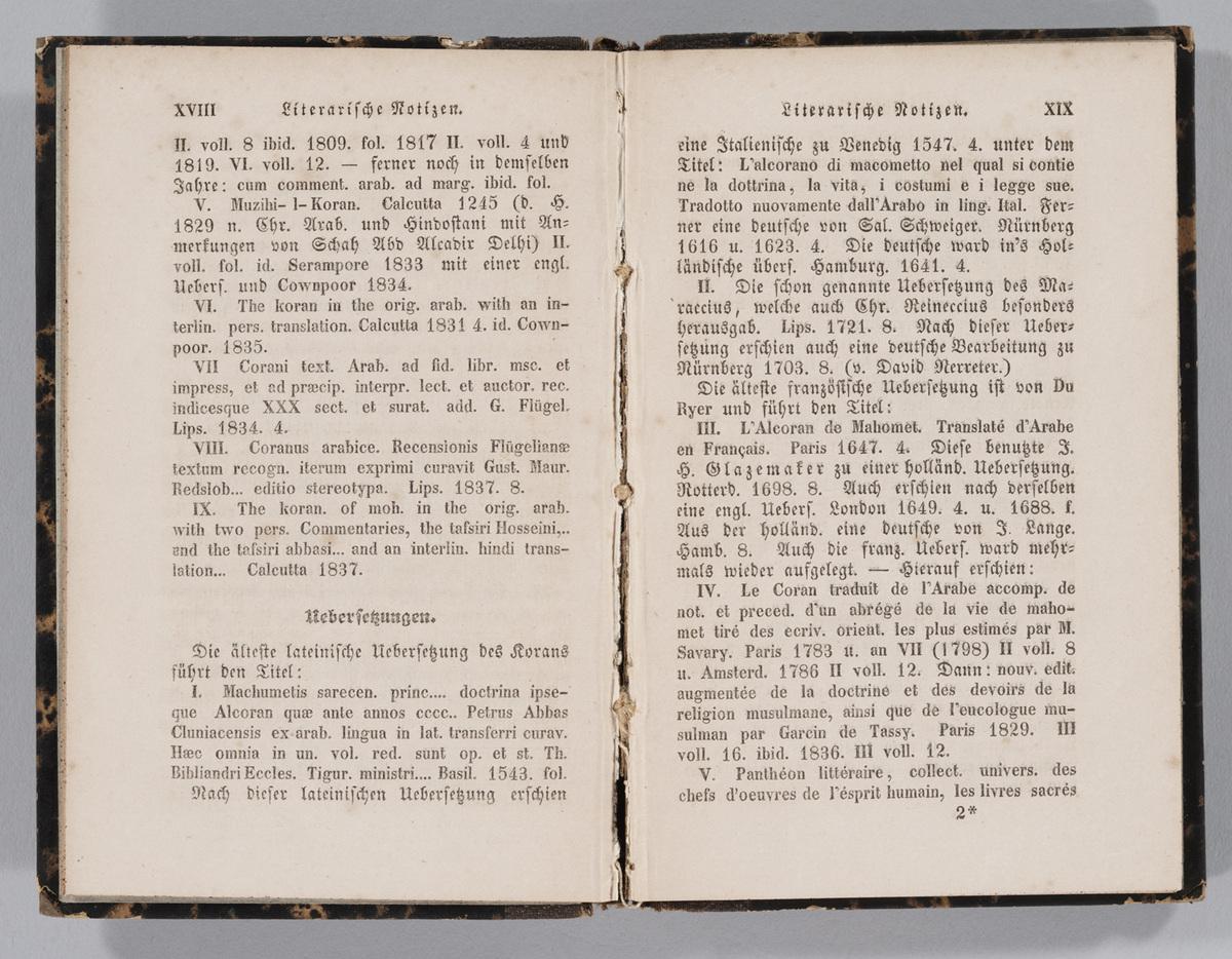 Historisch-kritische Einleitung in den Koran, pages XVIII to XIX