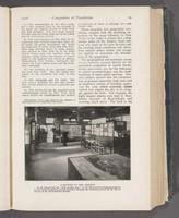 The Exhibit of Congestion Interpreted, p. 29