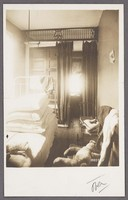 Photograph of a defective brooklyn tenement