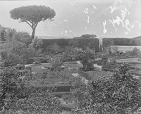 Colonna Gardens, flower garden. Rome, Italy.