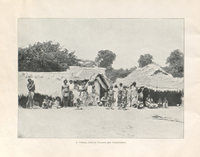 One hundred best views of Ceylon : from photographs taken by the publishers.