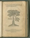 Grammatica Latina Philippi Melanchthonis